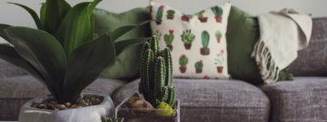 ¿Cómo remodelar tu hogar con poco presupuesto fácil y rápido?